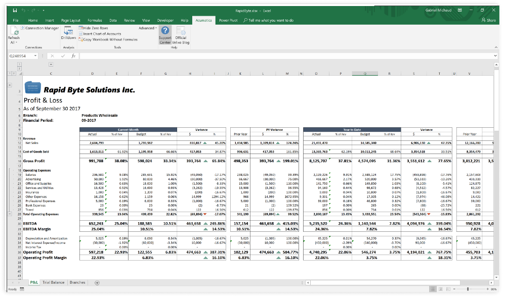 9 reasons why CFOs, controllers and accountants prefer Excel over Acumatica ARM for their financial and project reports